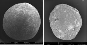Figure 1: Electron microscopy images of a coated pellet (Cellets® 1000, left), and a coated microparticle (Cellets® 100, right).